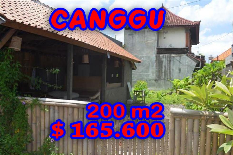 Land in Canggu Bali For sale 2 Ares in Canggu Berawa – TJCG098E
