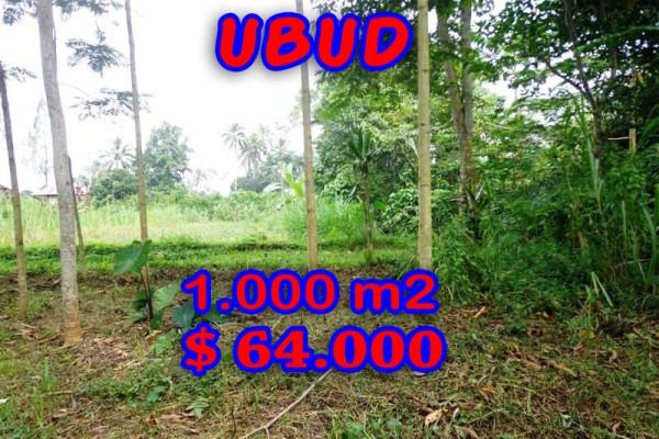 Eye-catching Property in Bali, Land sale in Ubud Bali – 1.000 m2 @ $ 63