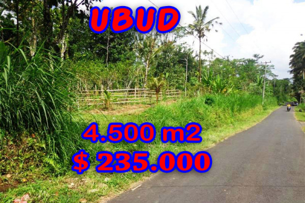 Land in Bali for sale, great view in Ubud Bali – TJUB237