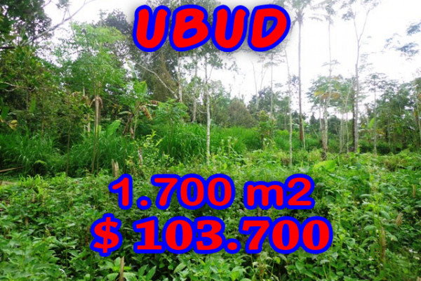 Land for sale in Ubud 17 Ares in with by the river valley – TJUB188