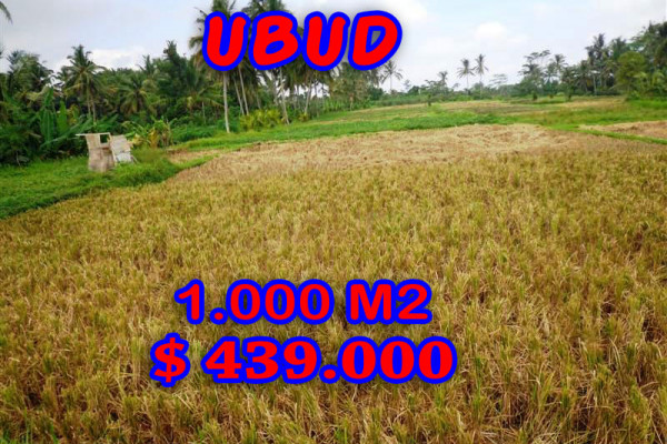 Land for sale in Bali, magnificent view Ubud Bali – TJUB235
