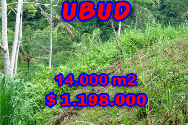 Fantastic Property for sale in Bali, land for sale in Ubud Bali  – 14.000 sqm @ $ 86