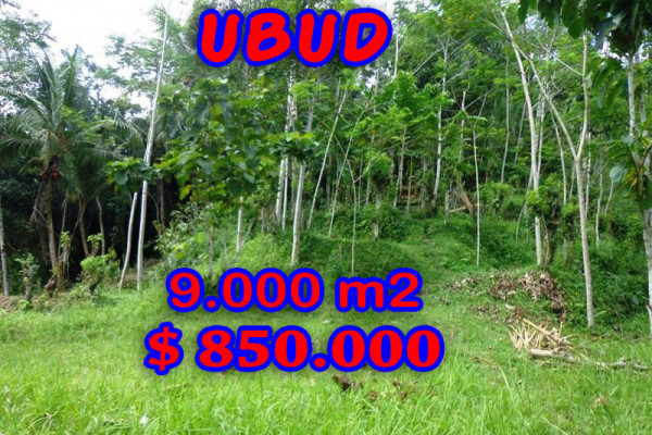 Spectacular Property for sale in Bali, land for sale in Ubud Bali  – 9.000 sqm @ $ 94