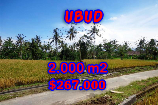 Land for sale in Ubud Bali, Astounding view in Ubud Tegalalang – TJUB246