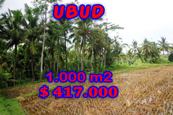 Land in Bali for sale, Great view in Ubud Bali – 1.000 m2 @ $ 417