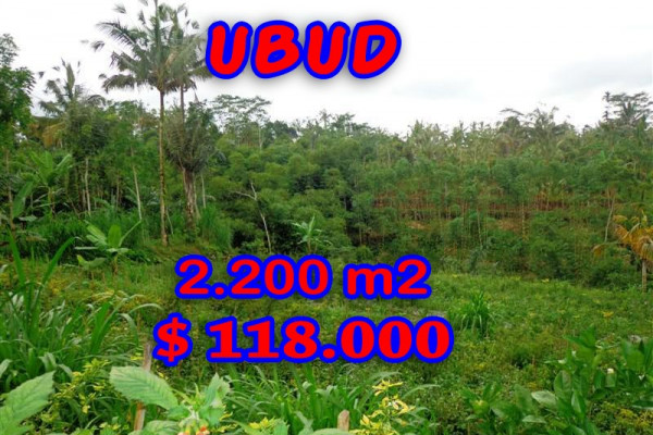 Land in Bali for sale, Stunning view in Ubud Bali – TJUB252