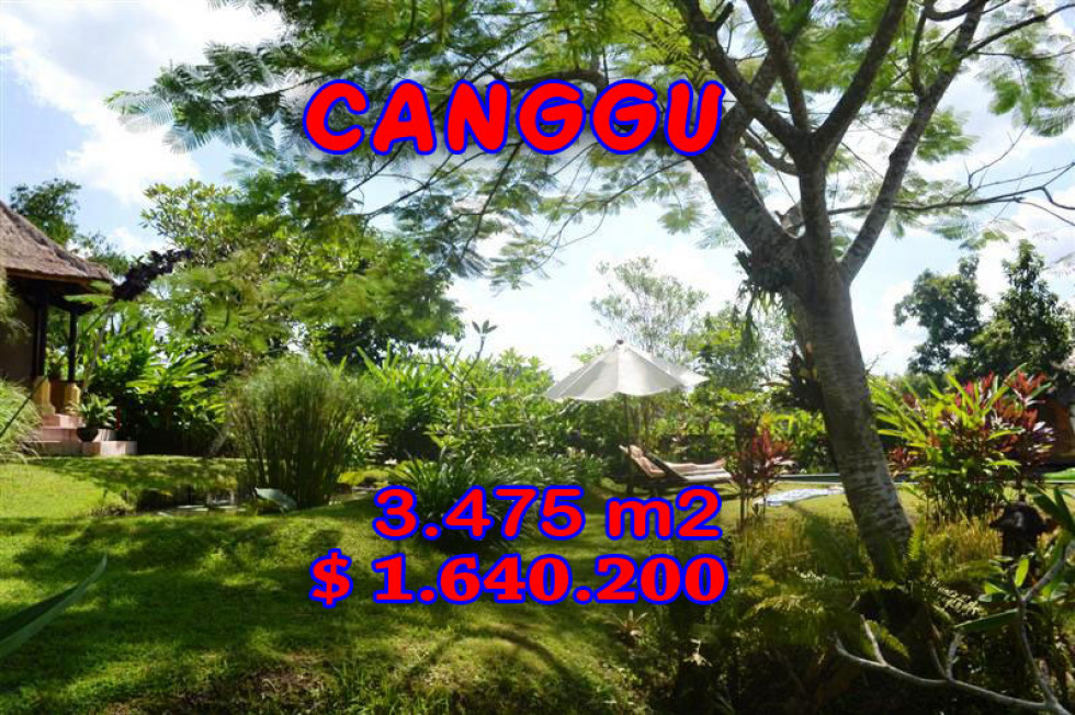Land for sale in Bali, Incredible view in Canggu Bali – 3.475 m2 @ $ 472