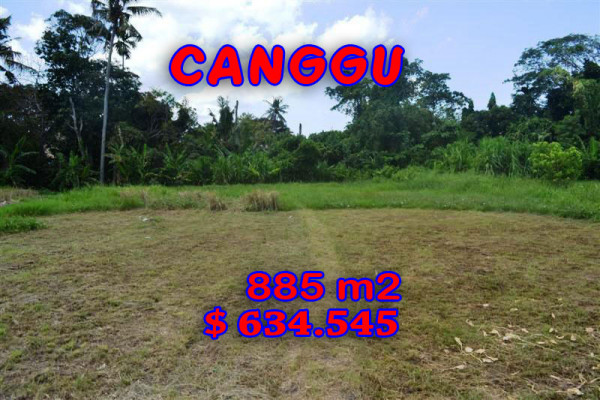 Land for sale in Bali, Magnificent view in Canggu Bali – 885 m2 @ $ 717