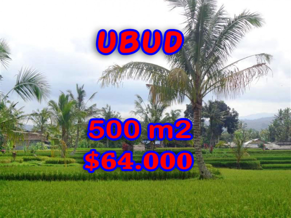 Land in Bali for sale, Stunning Property in Ubud Bali – 500 m2 @ $ 128