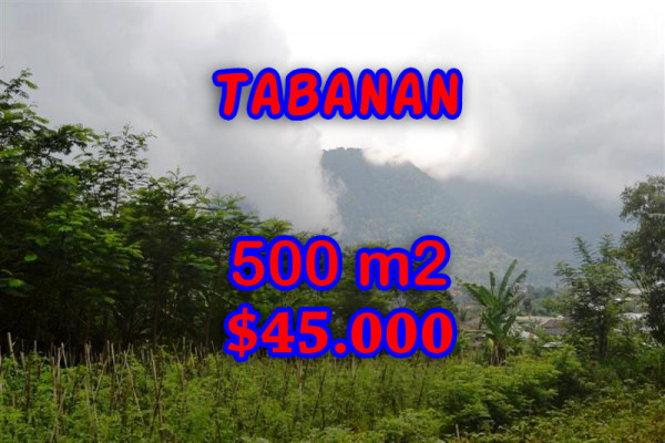 Splendid Property for sale in Bali, land for sale in Tabanan Bali  – 500 m2 @ $ 89