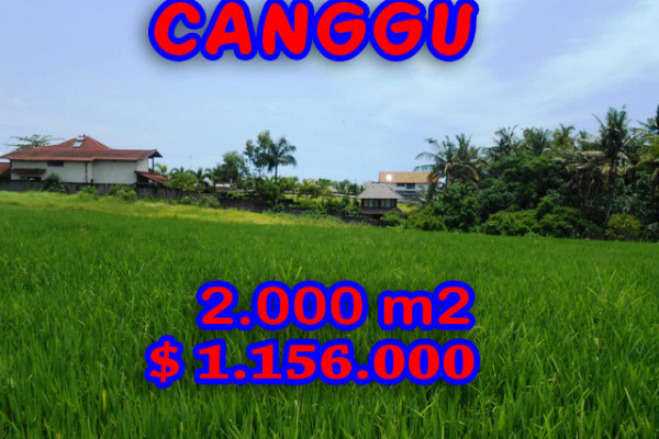 Land for sale in Canggu Bali, Astounding view in Canggu Pererenan – TJCG093