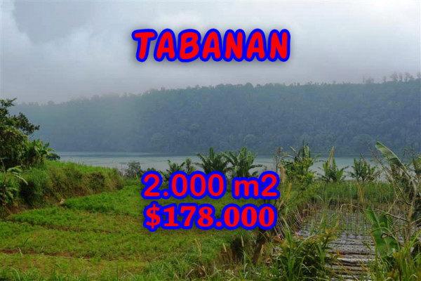 Property in Bali for sale, Beautiful land for sale in Tabanan Bali  – 2.000 m2 @ $ 86