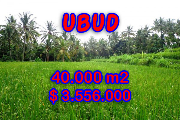Fabulous Land for sale in Ubud Bali, River side in Ubud Tampak siring– TJUB269