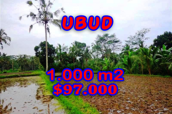 Land for sale in Bali, Magnificent view in Ubud Bali – 1.000 m2 @ $ 97