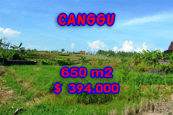Astounding Property for sale in Bali, Land in Canggu for sale– 650 sqm @ $ 606