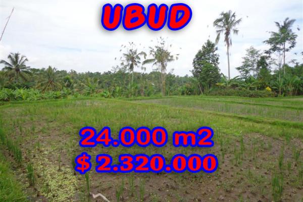 Land in Ubud Bali for sale, Incredible view in Ubud Payangan – TJUB262
