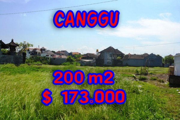 Fabulous Property in Bali, Land for sale in Canggu Bali – 200 m2 @ $ 861