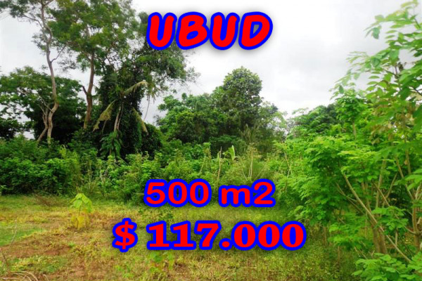 Exotic Property in Bali, Land for sale in Ubud Bali – 500 sqm @ $ 233