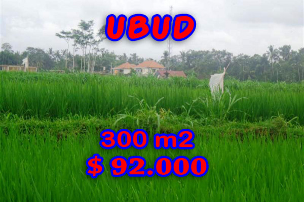 Land for sale in Bali, Exceptional property in Ubud Bali – 300 sqm @ $ 306