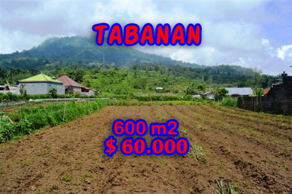 Land for sale in Tabanan Bali, Eye-catching view in Tabanan Bedugul – TJTB058