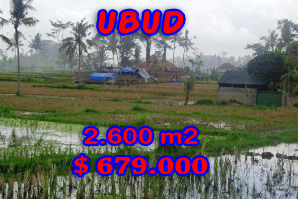 Land for sale in Bali, Amazing view in Ubud Bali – 2.600 sqm @ $ 261
