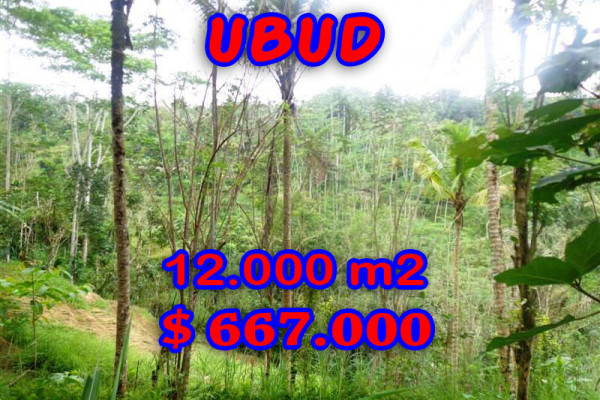 Land in Bali for sale, Eye-catching view in Ubud Bali – 12,000 sqm @ $ 56