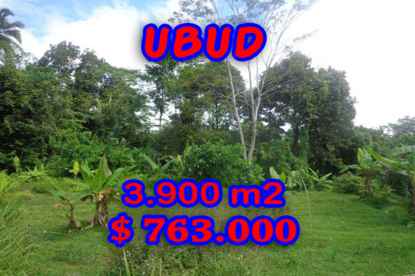 Land for sale in Bali, Fabulous view in Ubud Bali – 3.900 sqm @ $ 196