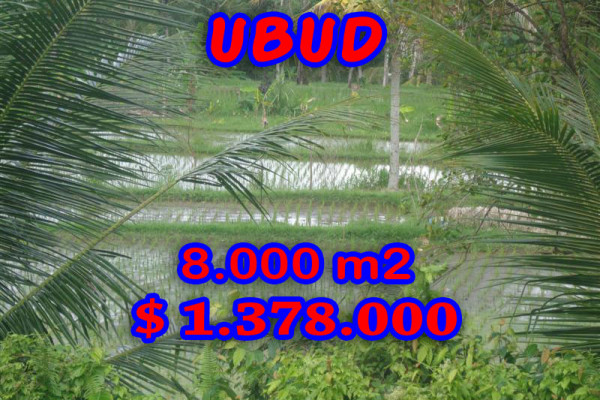 Land for sale in Bali, Fantastic view in Ubud Bali – 8.000 sqm @ $ 172
