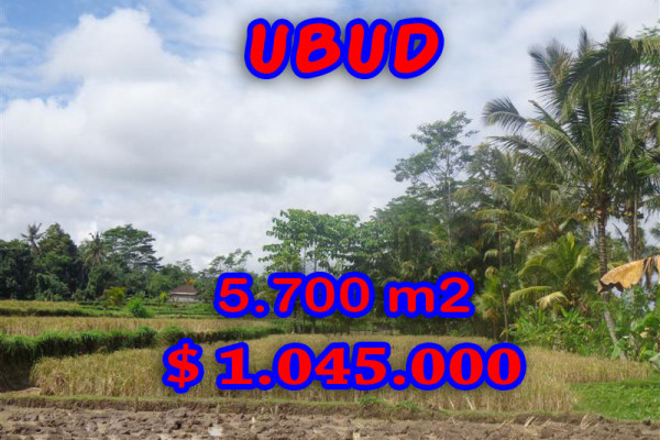 Land for sale in Bali, Amazing view in Ubud Bali – 5.700 sqm @ $ 183