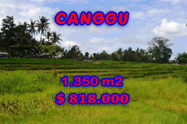 Land for sale in Bali, Fantastic view in Canggu Bali – 1,350 m2 @ $ 606