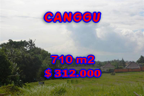 Beautiful Property for sale in Bali, land for sale in Canggu Bali  – 710 m2 @ $ 439