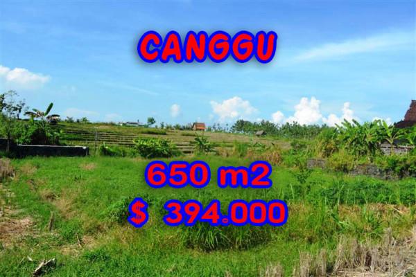 Fabulous Property in Bali, Land for sale in Canggu Bali – 650 m2 @ $ 606
