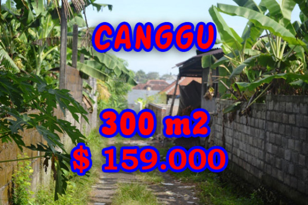 Unbelievable Property for sale in Bali, land for sale in Canggu Bali  – 300 m2 @ $ 528