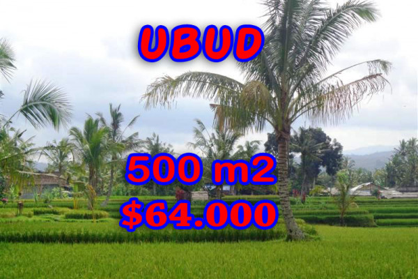Land for sale in Bali, Fantastic view in Ubud Bali – 500 sqm @ $ 128