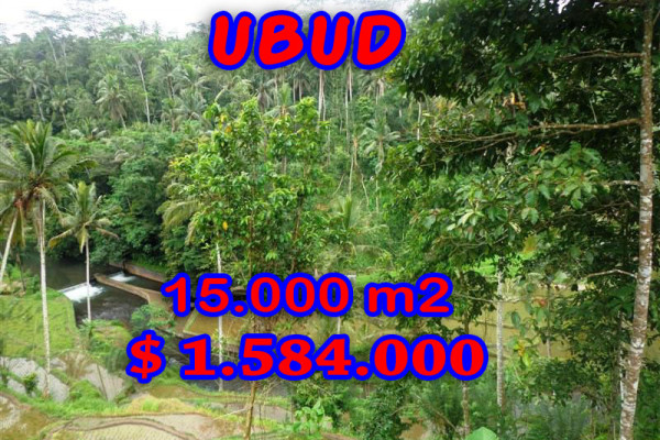 Land in Ubud Bali for sale Exotic view in Ubud Tampak Siring – TJUB273