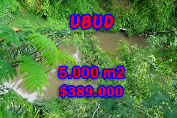 Attractive Property in Bali, Land for sale in Ubud Bali – 5.000 sqm @ $ 78