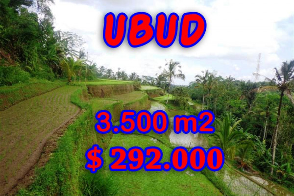 Land for sale in Ubud Bali, Great view in Ubud Tegalalang – TJUB295