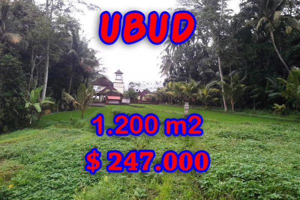 Land in Ubud Bali for sale, Outstanding view in Ubud Tegalalang – TJUB297