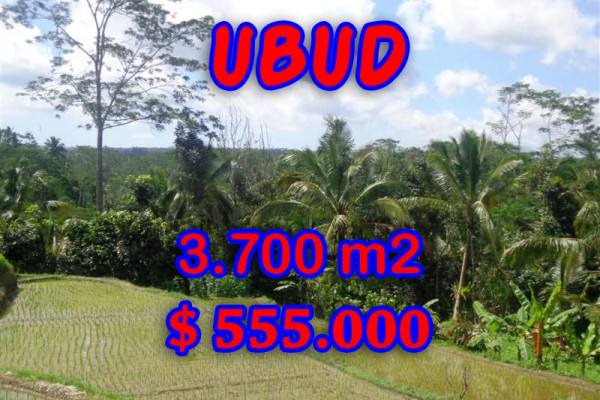 Land in Ubud for sale, Amazing view in Ubud Tegalalang Bali – TJUB293