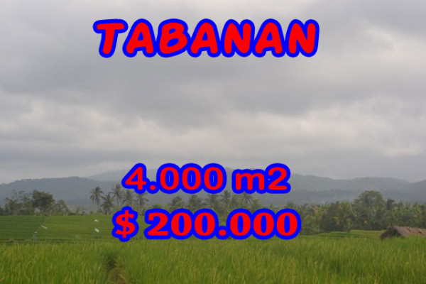 Outstanding Property for sale in Bali, land for sale in Tabanan Bali – TJTB084