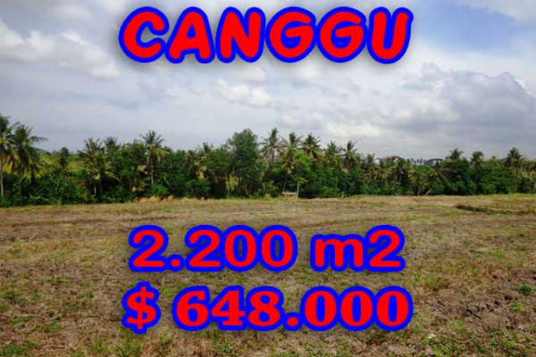 Land for sale in Bali, Fantastic view in Canggu Bali – 2.200 m2 @ $ 294