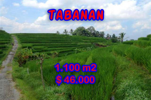 Amazing Property in Bali, Land for sale in Tabanan Bali – 1.100 m2 @ $ 39