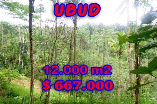 Land for sale in Bali, Fantastic view in Ubud Bali – 12,000 m2 @ $ 56