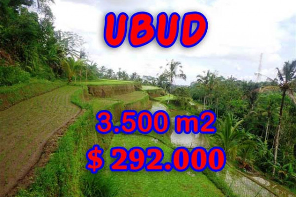 Land for sale in Bali, Fantastic view in Ubud Bali – 3,500 m2 @ $ 83