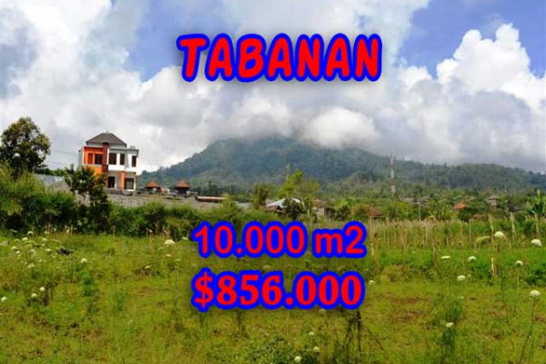 Eye-catching Property in Bali, Land sale in Tabanan Bali – 10.000 m2 @ $ 86