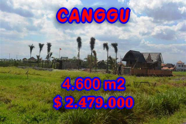 Land for sale in Bali, Magnificent property in Canggu Bali – 4,600 m2 @ $ 539