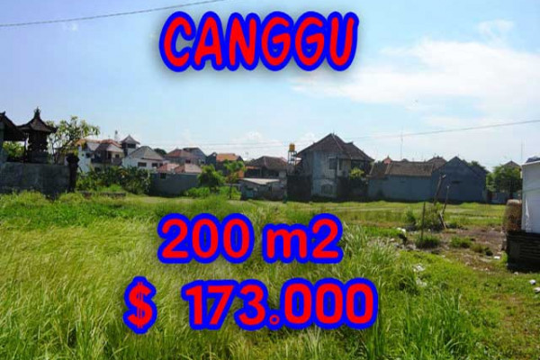Land for sale in Bali, Spectacular view in Canggu Bali – 200 m2 @ $ 861