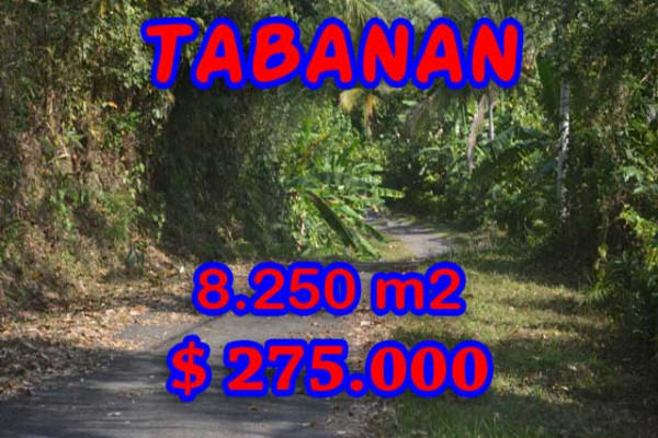Astonishing Property in Bali, LAND FOR SALE IN TABANAN Bali – 8.250 m2 @ $ 39