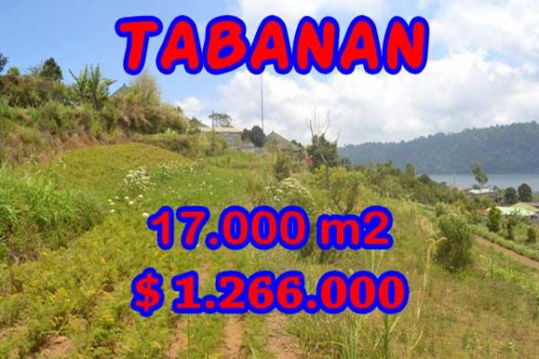 Land for sale in Bali, Fantastic view in Tabanan Bali – 17.000 m2 @ $ 39
