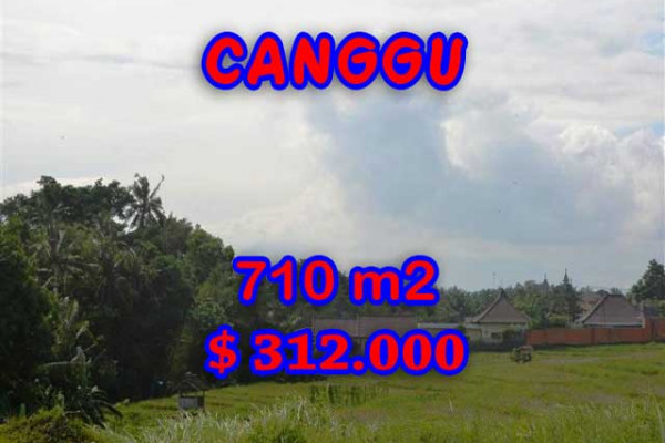 Land in Bali for sale, Great view in Canggu Bali – 710 m2 @ $ 439